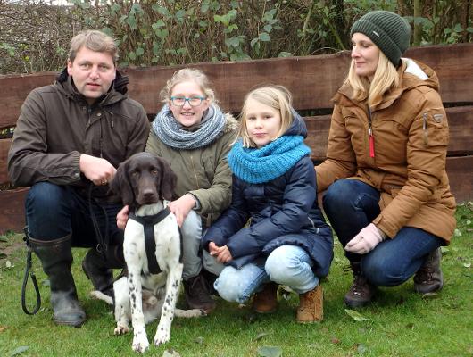 jagdhund-familienhund-004_530