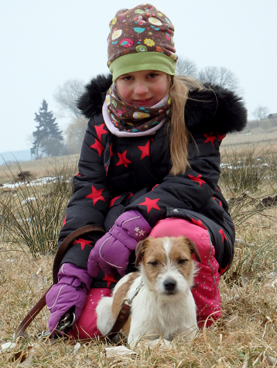 jagdhund-familienhund-015_530