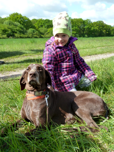jagdhund-familienhund-016_530