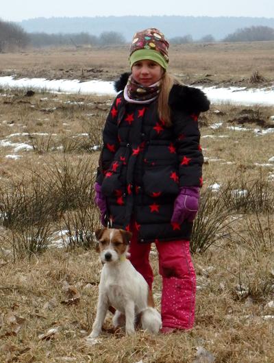 jagdhund-familienhund-017_530